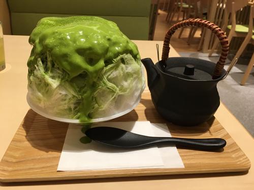 MACCHA HOUSE抹茶館 三井アウトレットパーク入間  抹茶 かき氷