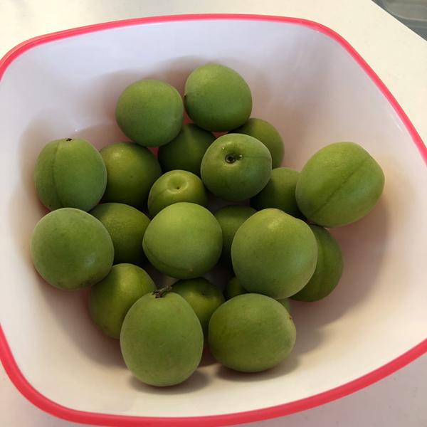 梅ジュース完成 レシピ付き 梅ソーダで楽しみ梅の実はそのまま食べても良し